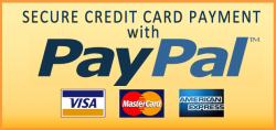 secure-paypal.png